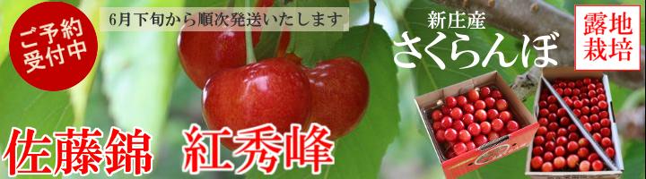 さくらんぼ2018
